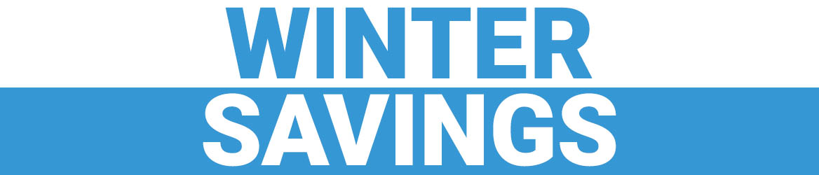 winter savings banner